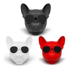 dog speaker bluetooth wholesale price online shopping store in Pakistan